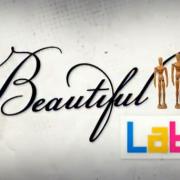 beautiful_lab