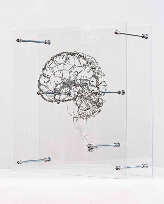 Federico Carbajal - Anatomical Architectures