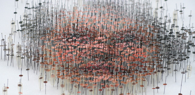 Michael Mapes – Photographic Specimens