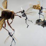 Tessa Farmer – Insect Art
