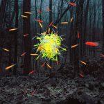 Thomas Jackson – Emergent Behavior – Sciami volanti di oggetti quotidiani | Collater.al