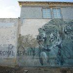 Le opere della street artist sudafricana Faith47 | Collater.al