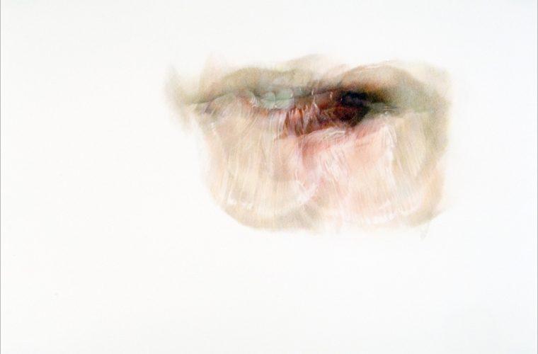 Lures e Lick Line, i due progetti di Julia Randall