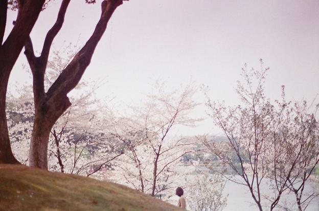 Li Hui - Fotografa cinese dallo stile etereo e surreale