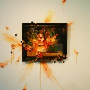 Valerie Hegarty - Artista distruttiva americana