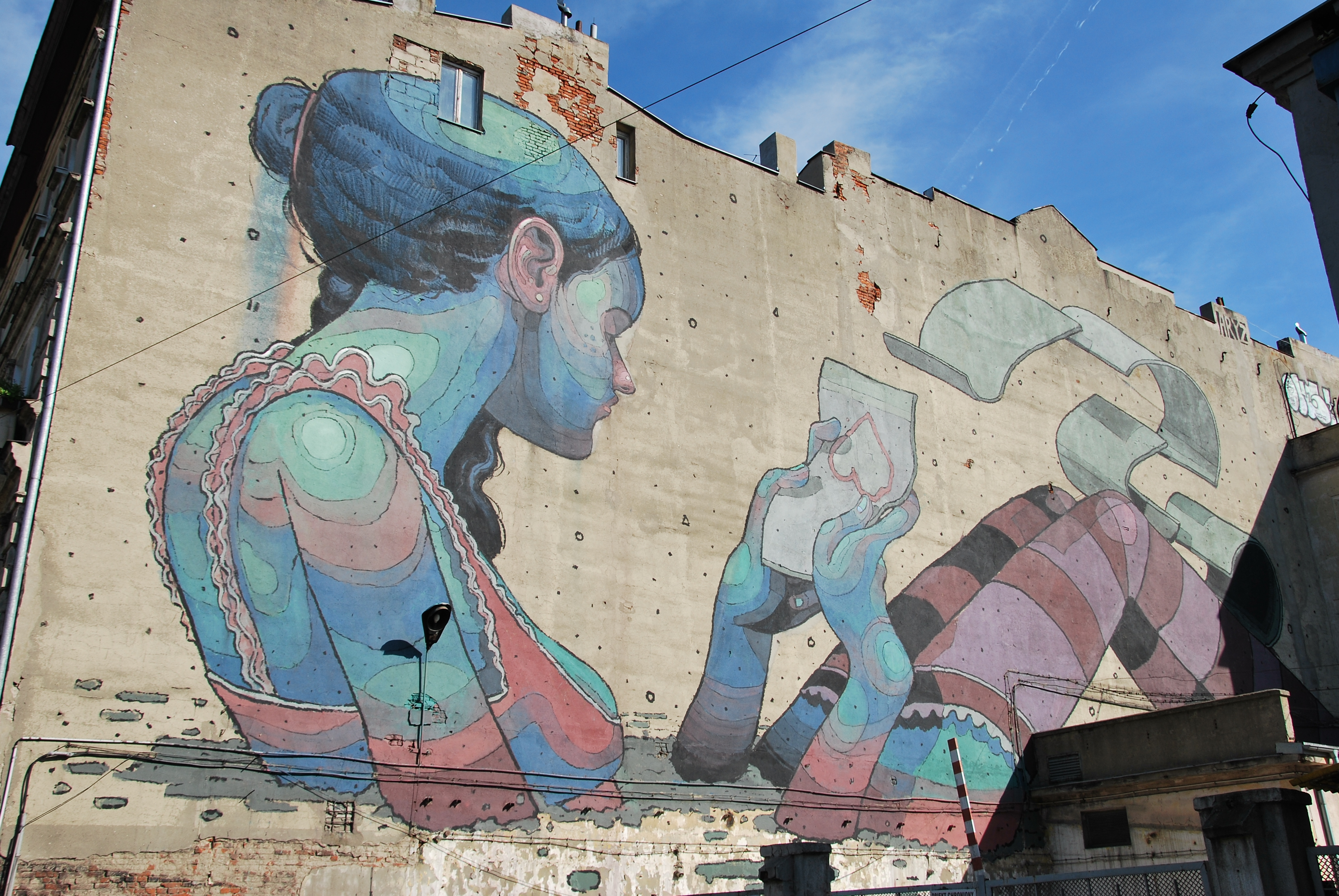 I wall paintings di Aryz