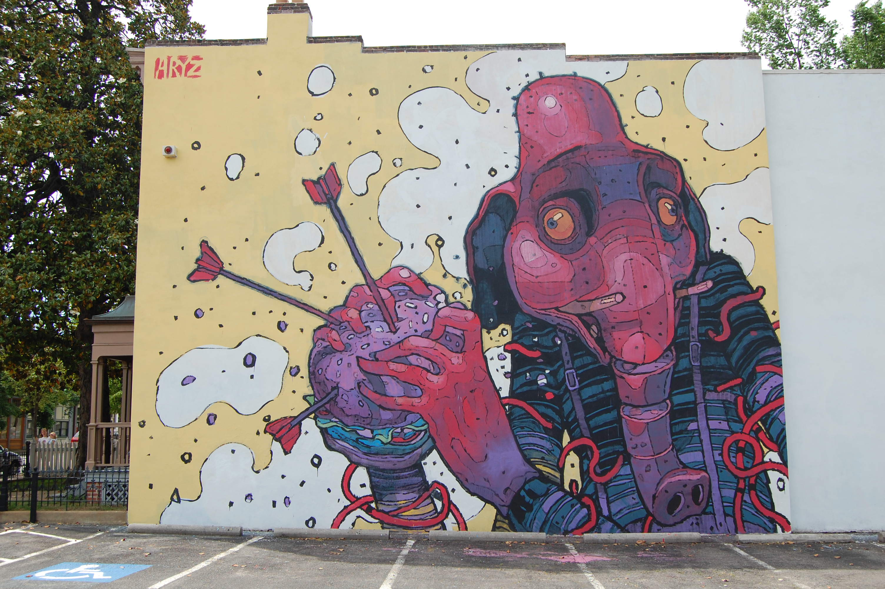I wall paintings di Aryz