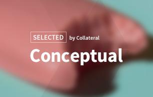 Selected conceptual