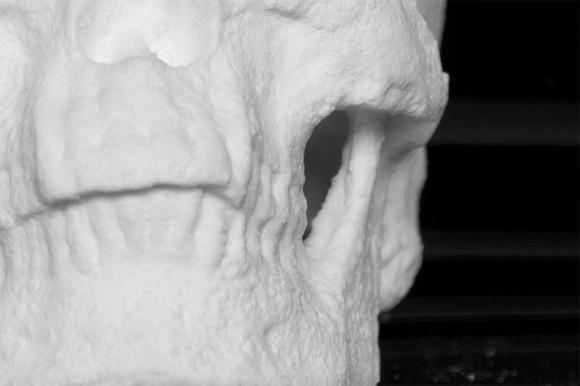 Diddo - Ecce Animal - Scultura di un teschio realizzata con cocaina