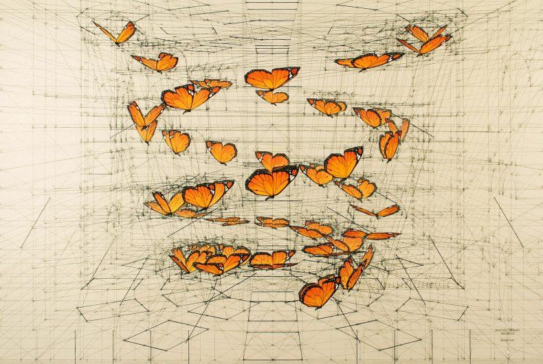 Calculation, le illustrazioni matematiche di Rafael Araujo