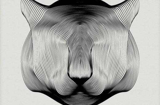 Animals in Moiré, la serie dell'illustratore Andrea Minini