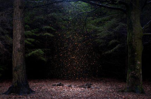 Stars, il progetto fotografico di Ellie Davies