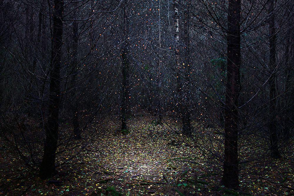 Stars, il progetto fotografico di Ellie Davies | Collater.al