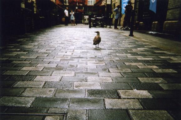 Café Art - Londra raccontata negli scatti dei senzatetto