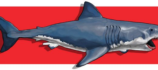 """Lo Squalo 19 – Il quarantesimo anniversario di """"Jaws"""""""