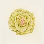 Aurel Schmidt - Fruits   Collater.al