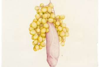 Aurel Schmidt - Fruits | Collater.al