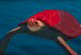 The red Turtle - Il nuovo incantevole trailer dello Studio Ghibli | Collater.al evd