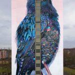 Starling – Lo Storno di Berlino   Collater.al