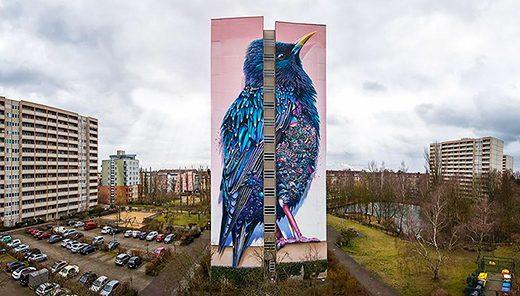 Starling – Lo Storno di Berlino