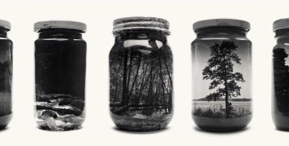 Jarred & Displaced – La Finlandia racchiusa in vasetti di vetro | Collater.al evd