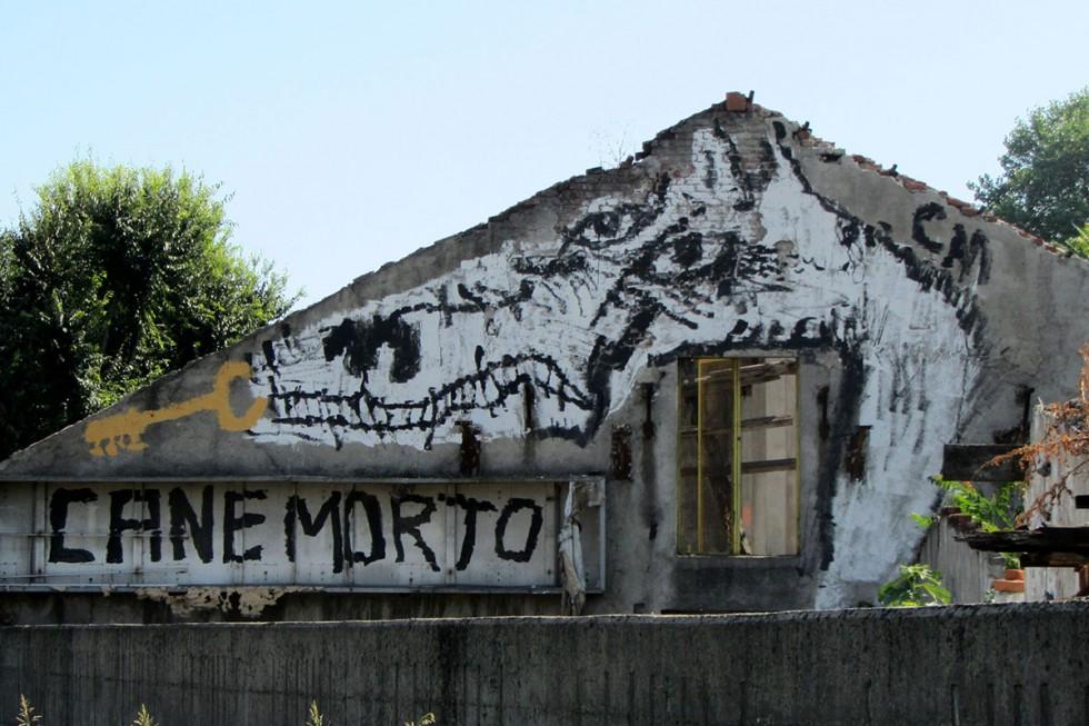 CANEMORTO - La street art è sovversione   Collater.al