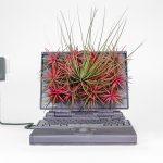 Plant your Mac! – Prodotti Apple trasformati in vasi e fioriere | Collater.al