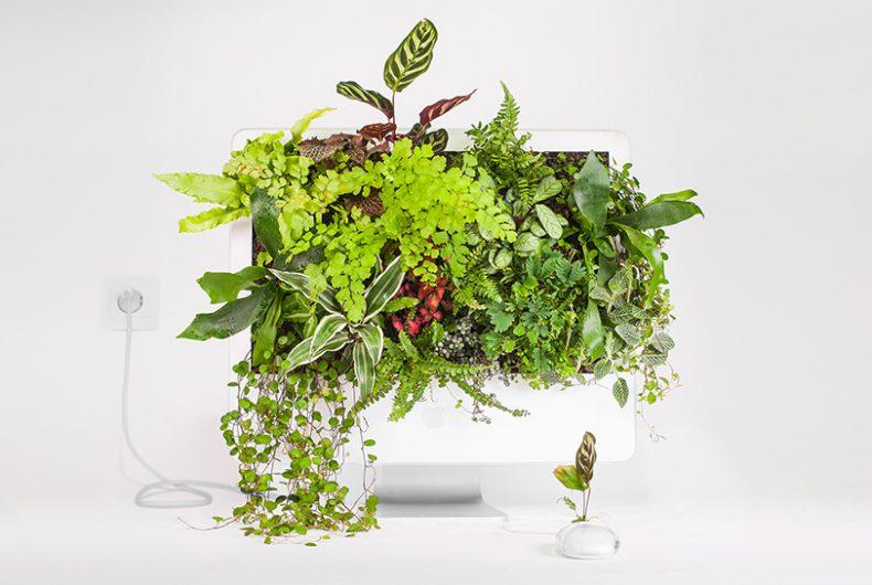 Plant your Mac! – Prodotti Apple trasformati in vasi e fioriere