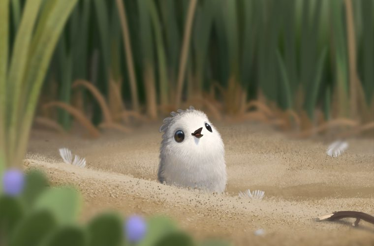 Piper – The new incredible Pixar Animation's short
