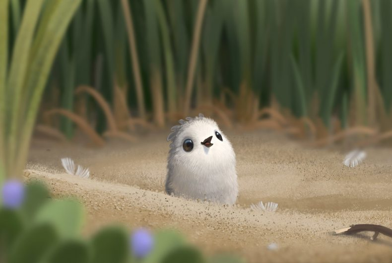 Piper, l'incredibile corto della Pixar Animation