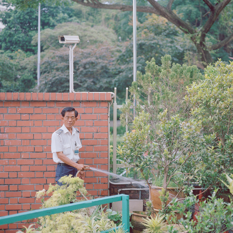 Le fantasie ordinarie e la globalizzazione emotiva di Nguan | Collater.al
