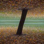 1+1=1 – Le immagini duplicate di Denis Cherim | Collater.al