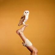 Animals - Il rapporto uomo/animale visto da Ryan McGinley   Collater.al