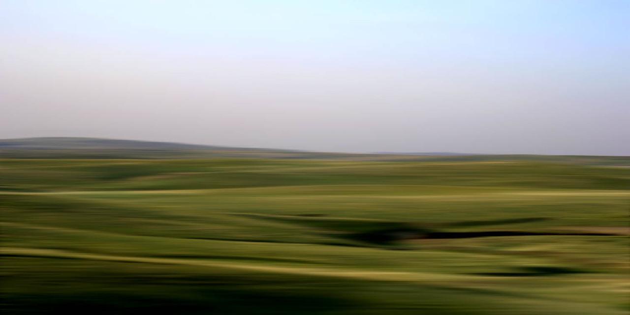 I paesaggi concettuali di Danae Falliers