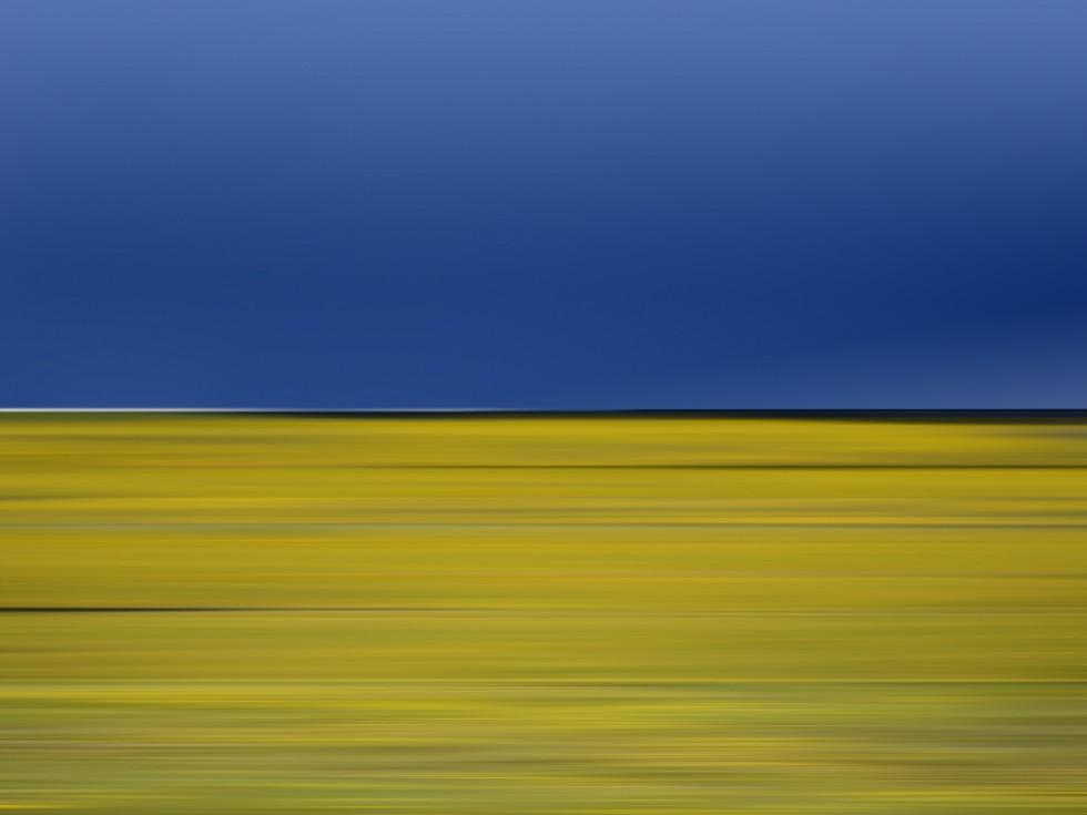 I paesaggi concettuali di Danae Falliers | Collater.al