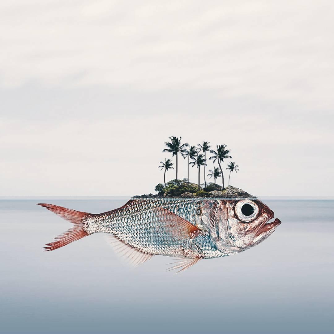 I fotomontaggi onirici di Luisa Azevedo | Collater.al