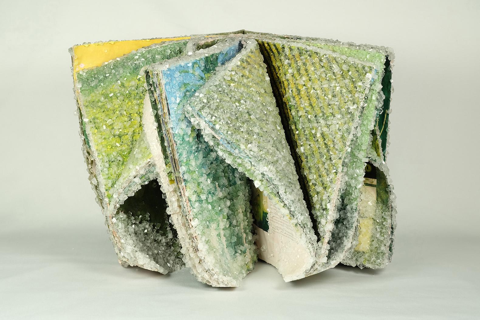 I libri cristallizzati di Alexis Arnold | Collater.al