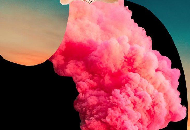 'Imaginary Beings', i collage surreali di Johanna Goodman