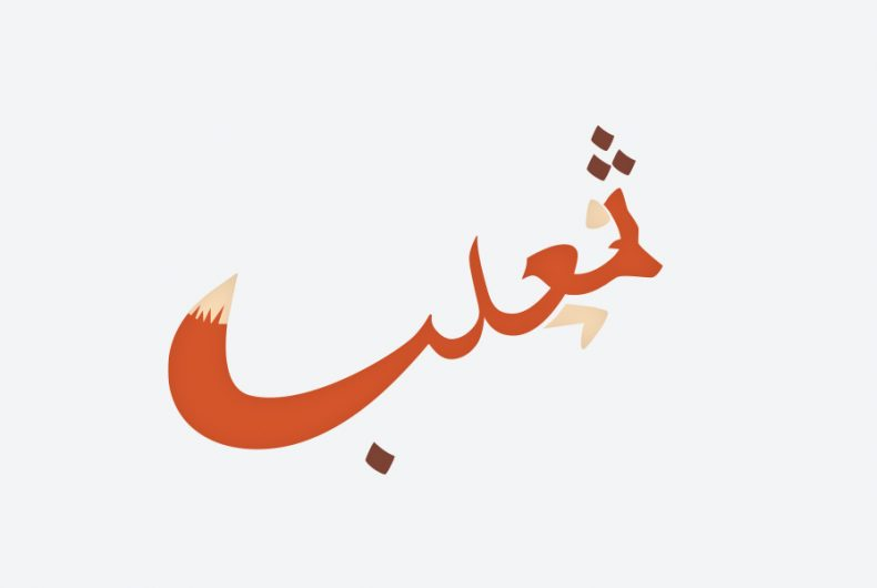Learning Arabic with the drawings of Mahmoud Tammam
