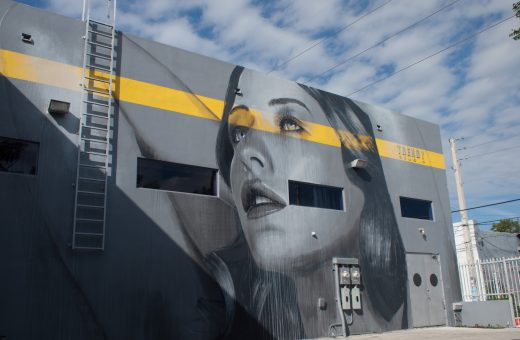 The female portraits of the street artist Rone