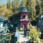 Freedom Cove, una casa sull'acqua   Collater.al