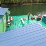 Freedom Cove, una casa sull'acqua | Collater.al