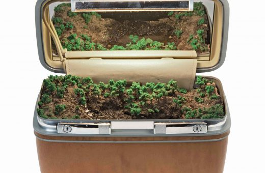 Traveling Landscapes, mini ecosystems in vintage suitcases