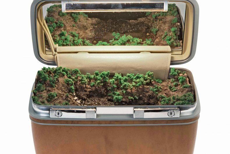 Traveling Landscapes, ecosistemi in miniatura all'interno di valigie vintage
