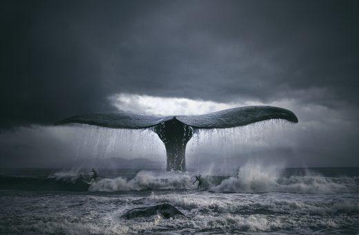 Le sorprendenti fotomanipolazioni di Tomasz Zaczeniuk