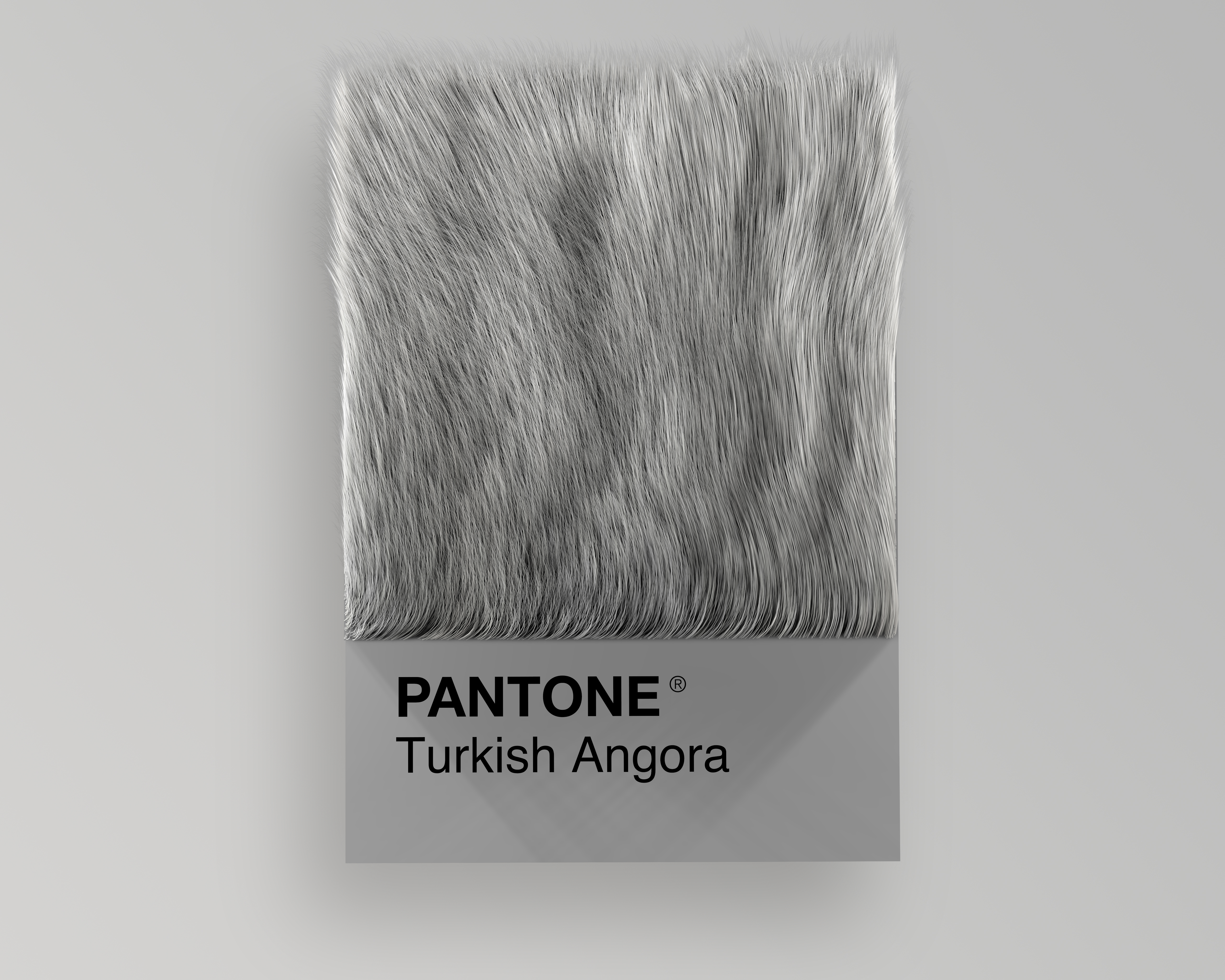 Alessio D'Amico - Cat breeds as Pantone | Collater.al 10