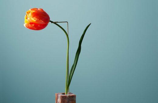 Posture Vases, il progetto firmato da Bloc Studios e Carl Kleiner