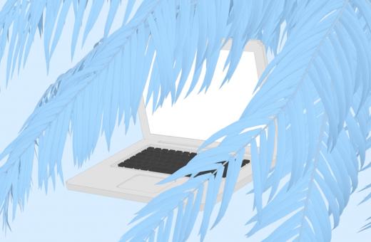 Natura e tecnologia nelle gif di Sasha Katz