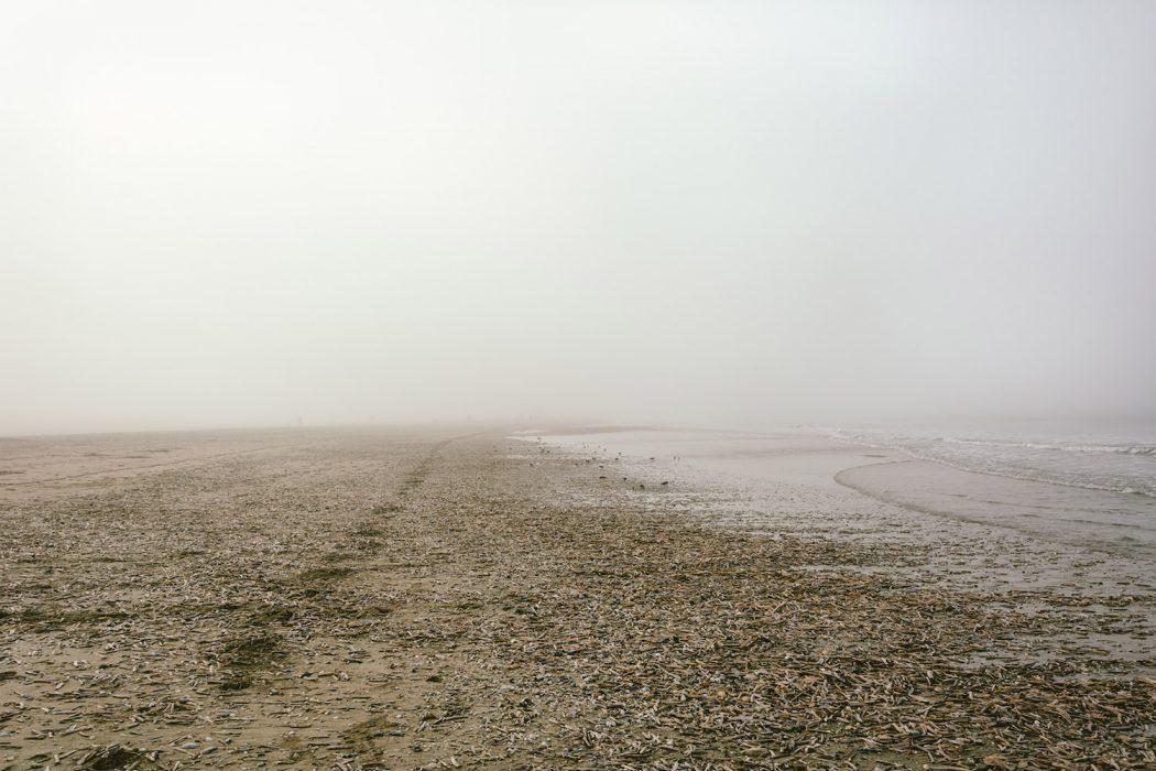 Plage Isolee, la solitudine nelle fotografie di Raul Guillermo | Collater.al 3