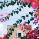Light Tellers intervista di What Italy Is a Elena Orlando   Collater.al 9